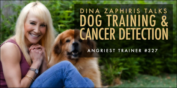 THE ANGRIEST TRAINER 327:  ONE-ON-ONE WITH DINA ZAPHIRIS