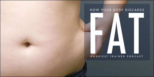 How Your Body Discards Fat