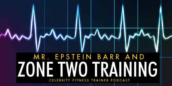 Mr. Epstein Barr and Zone Two Training