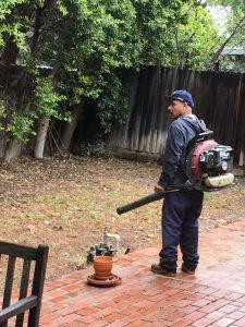 Vinnie's Rainy Day Leaf Blower