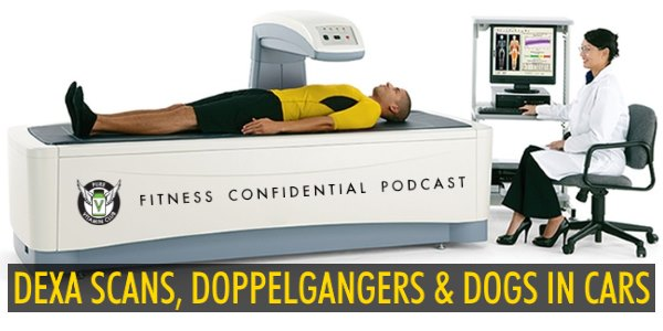 DEXA Scans, Doppelgangers & Dogs in Cars – Episode 904