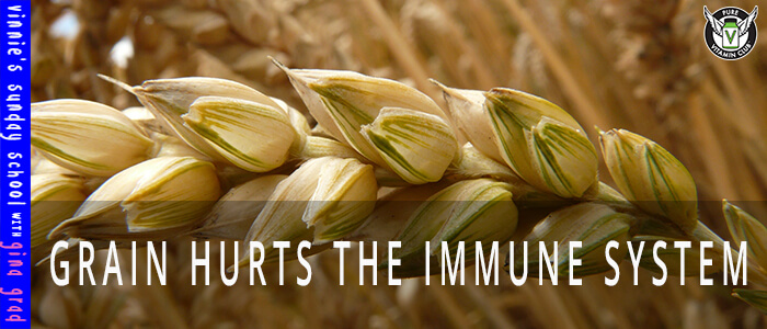 EPISODE-1158-Grain-Hurts-the-Immune-System