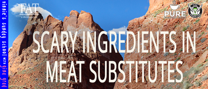 EPISODE-1403-Scary-Ingredients-in-Meat-Substitutes