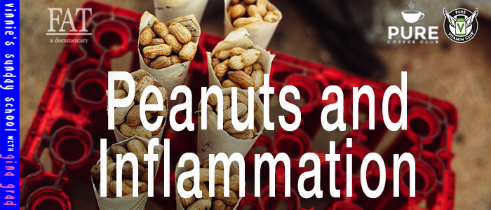 EPISODE-1458-Peanuts-and-Inflammation